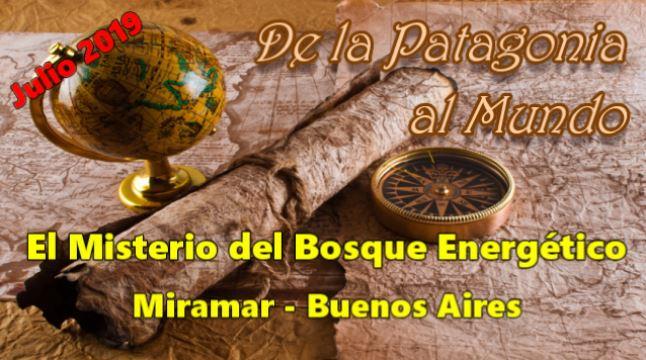 El misterioso Bosque Energético de Miramar