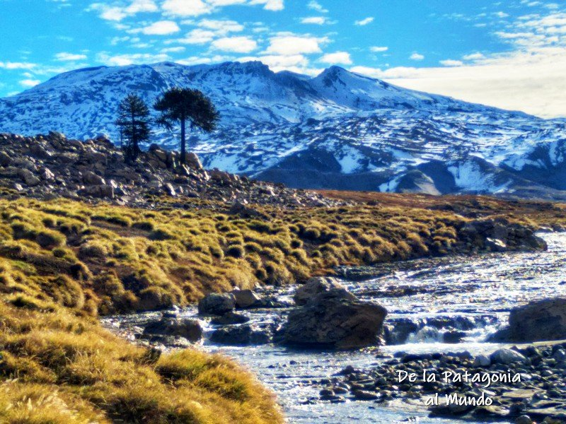 Río Agrio y de fondo el Volcán Copahue